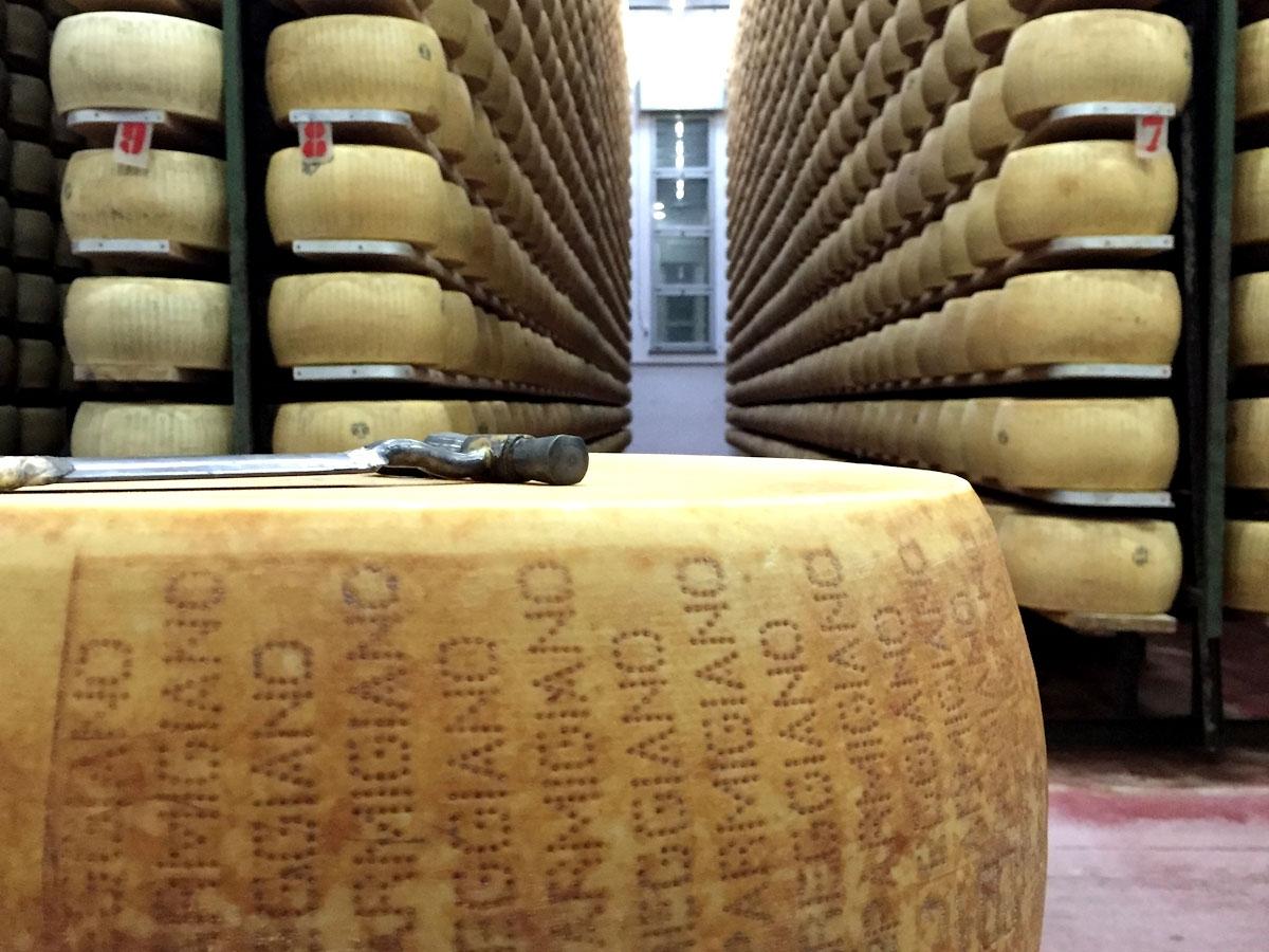 Visit a Parmigiano Reggiano cheese factory