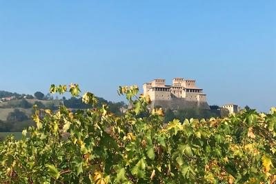 Tour gastronomico: Cantine Vinicole sulle colline Parmensi